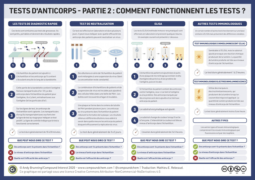 Tests d'anticorps : comment fonctionnent-ils ?